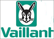 Vaillant VCW 240H Boiler Parts