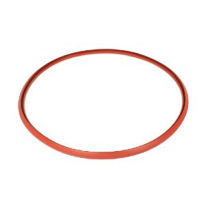 720538401 Remeha Avanta 28C Heat Exchanger Gasket S59596