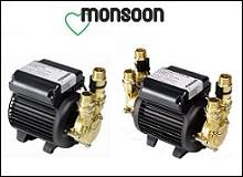 Monsoon Standard Pumps