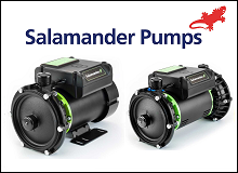 Salamander Right Pumps